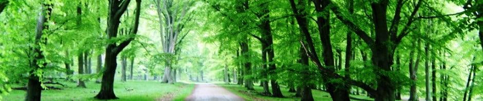 Fyns Skovkarleklub - Støtter orienteringsløb på Fyn